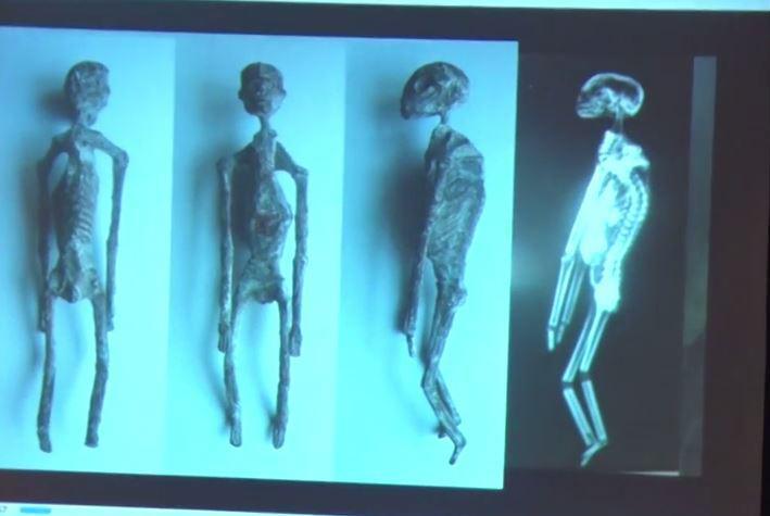 Loạt xác ướp người ngoài hành tinh ở Peru là thật? - 1