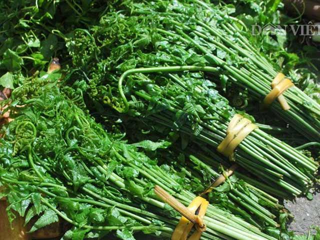 Không ai ngờ loại rau mọc hoang lại có giá trị trường thọ? - 1