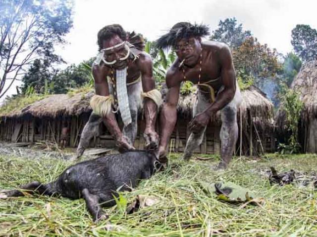 Cận cảnh bộ lạc Indonesia sống hoang dã nhất hành tinh