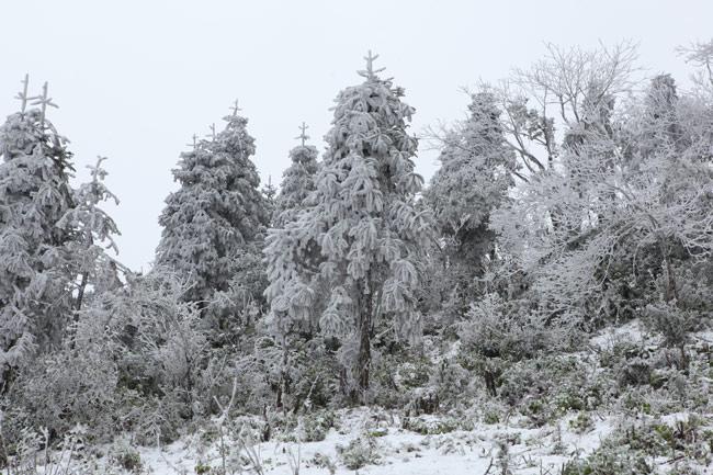 Miền Bắc bước vào đợt rét kỷ lục từ đầu đông, có nơi dưới 6 độ C - 1