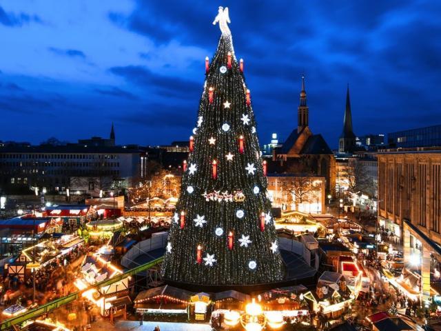 """Đã mắt ngắm những cây thông Noel """"ngầu"""" nhất thế giới"""