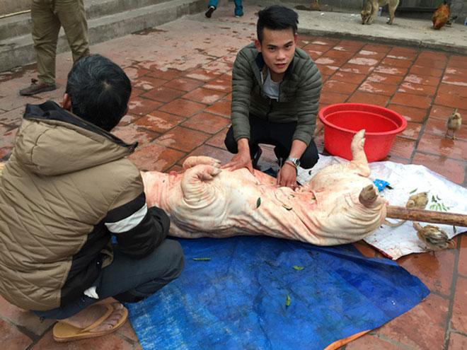 Lợn quay xứ Lạng – đặc sản ngon nức tiếng của núi rừng Đông Bắc - 1