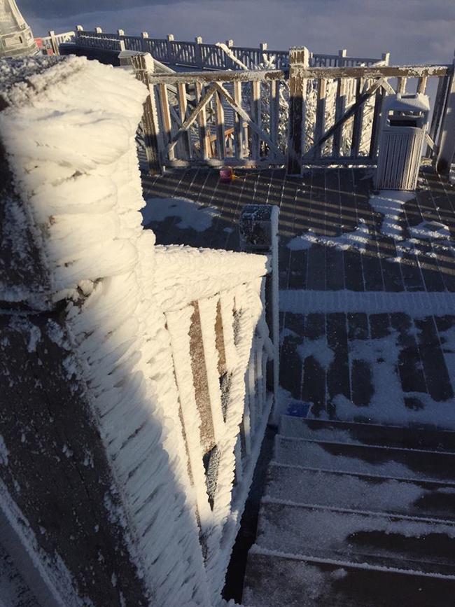 Nhiều du khách tham quan như ngỡ mình đang lạc vào mùa đông ở châu Âu.