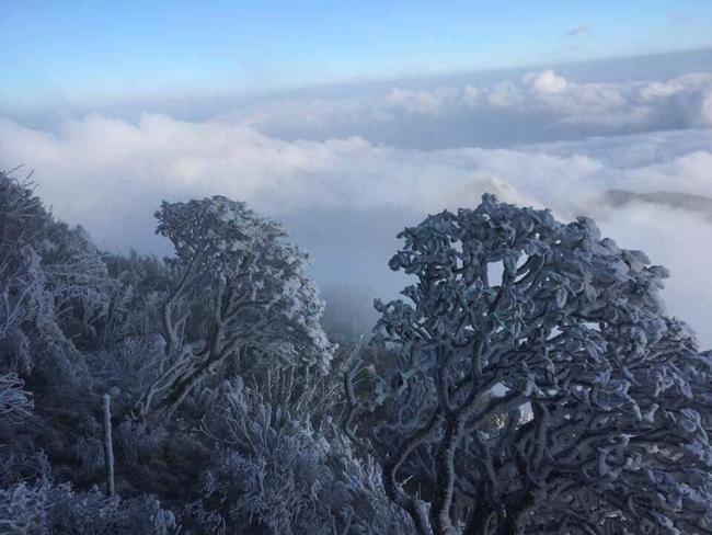 Cứ lên cao 100 mét thì nhiệt độ lại giảm 0,5-0,6 độ C, do đó đỉnh Fansipan xuống âm độ C và xuất hiện băng tuyết.