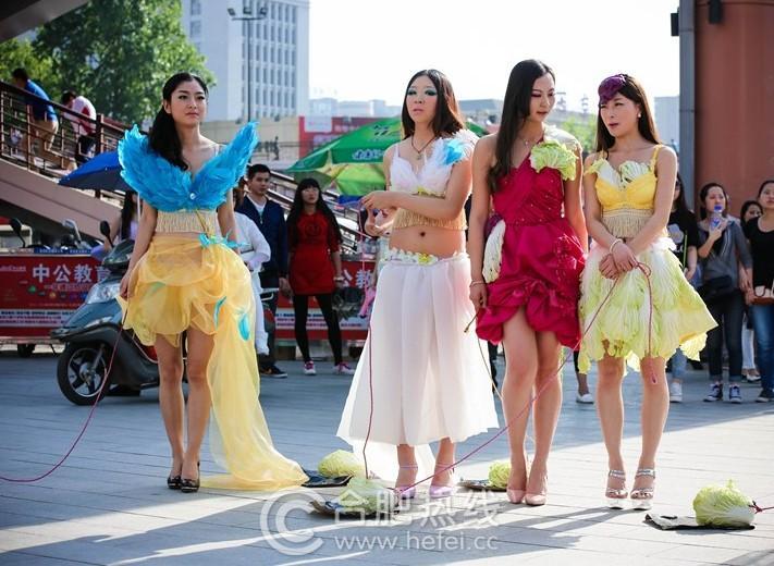 Phát ngất vì cuộc thi Hoa hậu Cải thảo, Bò sữa ở Trung Quốc - 1