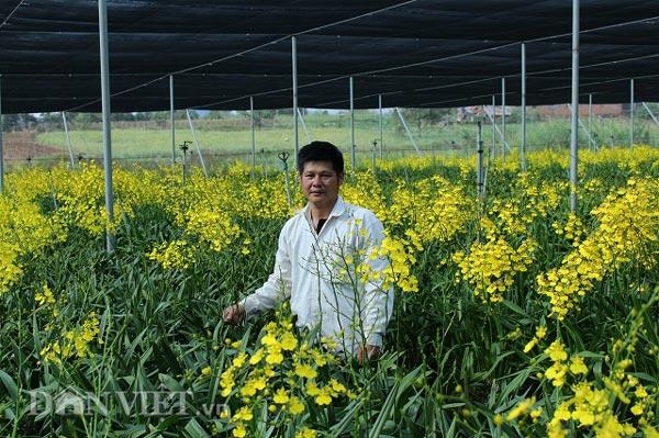 """Giảng viên về vườn """"nghịch đất"""" trồng lan Vũ nữ, lãi 50 triệu/tháng - 1"""