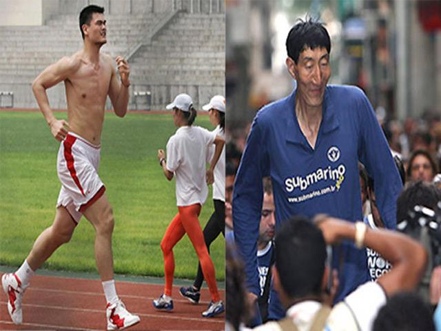 """Ngỡ ngàng: Yao Ming 2m29 vẫn chưa khủng nhất Trung Quốc vì """"sếu vườn"""" này"""