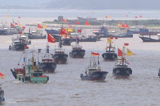 """""""Siêu tàu"""" Trung Quốc vét sạch cá thế giới - 1"""