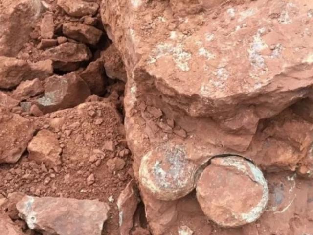 TQ: Đào đất xây dựng, phát hiện hàng loạt trứng khủng long 145 triệu năm