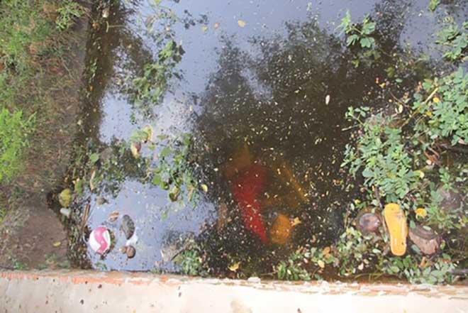 Phát hiện 2 thi thể dưới mương nước - 1