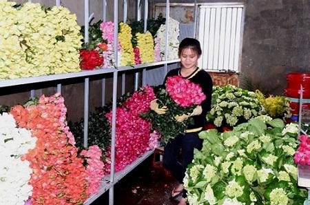Trước lễ 20-10, hoa Đà Lạt tăng giá mạnh - 1