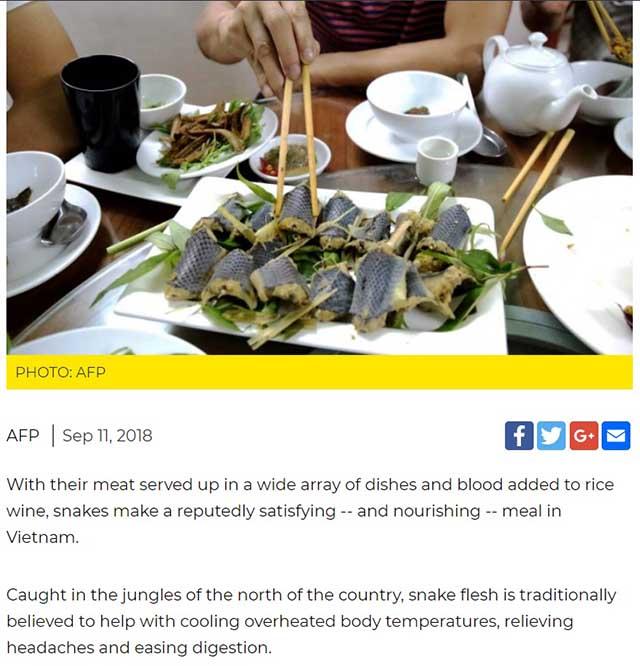 Thịt rắn của Việt Nam nổi tiếng trên báo nước ngoài - 1