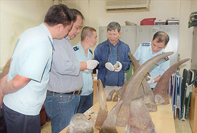 Buôn lậu 'khủng' ngà voi, sừng tê giác: Lọt lưới chủ hàng? - 1