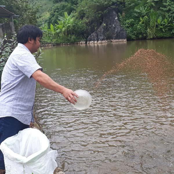 Đào ao thả cá giữa thung lũng hoang vắng, lãi hơn 300 triệu/năm - 1