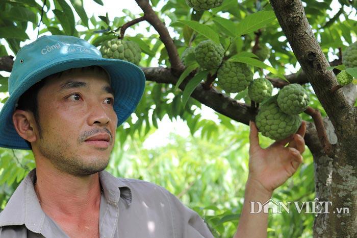Trai phố núi trồng cây ra quả toàn là mắt, lãi 100 triệu đồng - 1