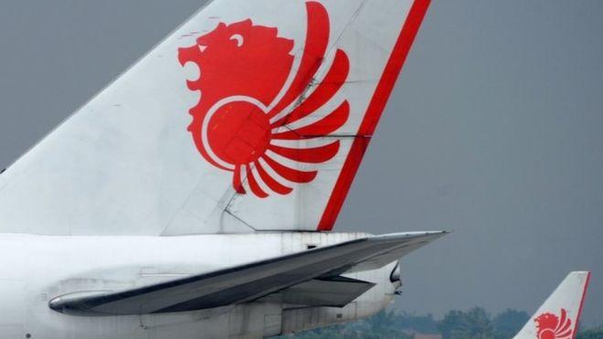 Máy bay Indonesia chở 189 người rơi xuống biển - 1