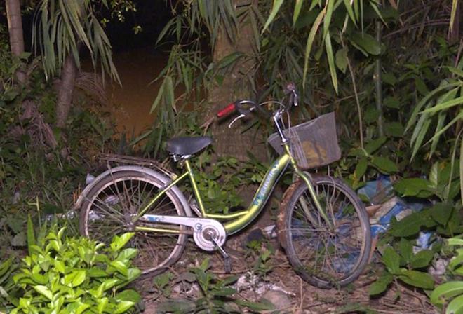 Va chạm trên cầu, bé gái đi xe đạp rơi xuống sông mất tích - 1