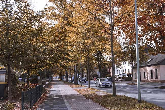 Ở Đức, mùa thu được coi là mùa lãng mạn nhất trong năm