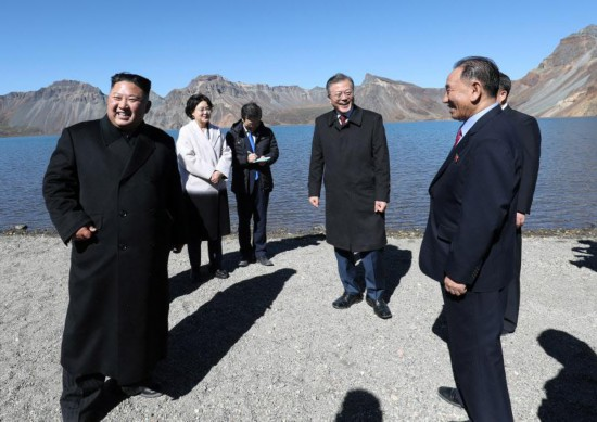 Loại nấm ông Kim Jong Un tặng Hàn Quốc: nguyên liệu ẩm thực quý, giá 18 triệu/kg - 1