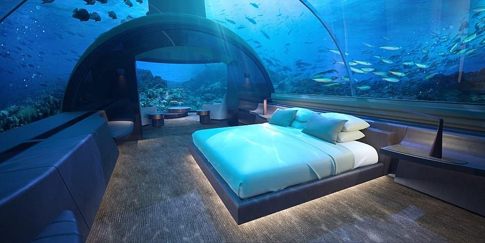 Ngủ cùng cá trong khách sạn đầu tiên dưới đáy đại dương - 1