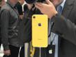 """Chuyên gia phân tích nhận định Apple đang """"ngậm trái đắng"""" với iPhone XR"""