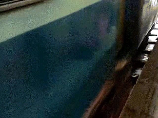 Thót tim cảnh tàu hỏa chạy qua khi bé gái 1 tuổi đang nằm dưới đường ray