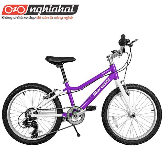 Sơn chống độc – Tiêu chuẩn bắt buộc của xe đạp trẻ em Maruishi Nhật Bản - 1