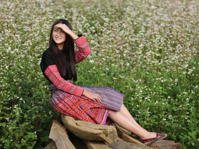 Mê mẩn ngắm đồi hoa tam giác mạch trên cao nguyên Mộc Châu lộng gió