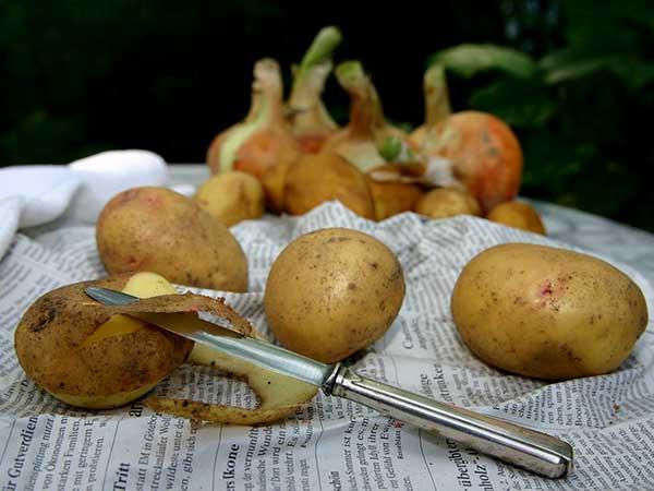 Lợi ích sức khoẻ không ngờ của vỏ khoai tây - 1