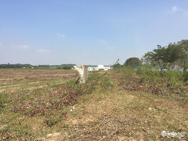 """Đô thị """"ma"""" Nhơn Trạch, Đồng Nai: La liệt dự án bỏ hoang, chung cư không người ở - 1"""