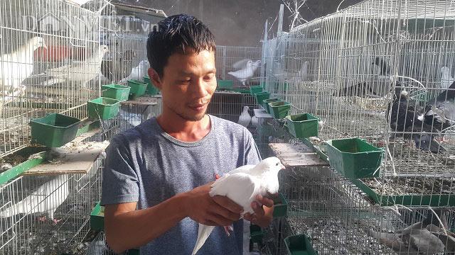 """Bỏ vô lăng về quê nuôi chim ưa sạch và con """"chết sớm"""", lãi 13 triệu/tháng - 1"""