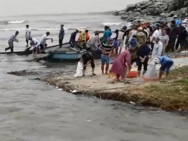 """Sau trận mưa khủng khiếp, người Đà Nẵng đổ xô ra biển vớt """"lộc trời ban"""""""