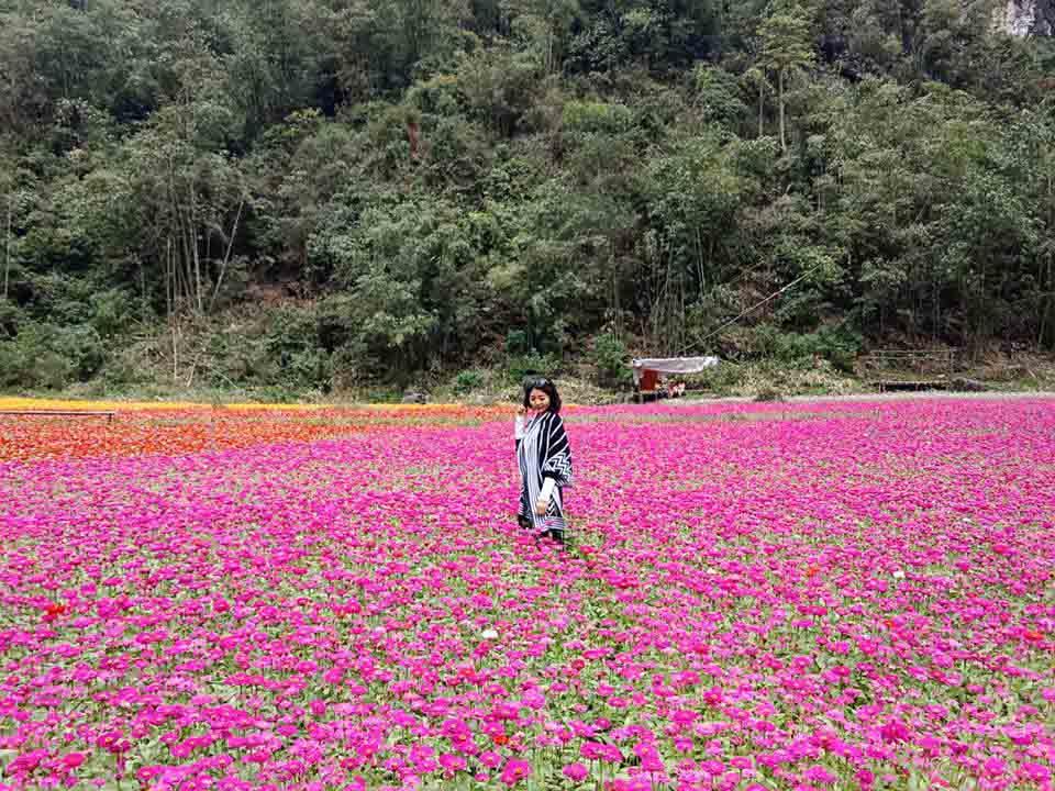 Ngỡ lạc chốn thiên đường ở thung lũng hoa đẹp ngất ngây ở Lạng Sơn - 1