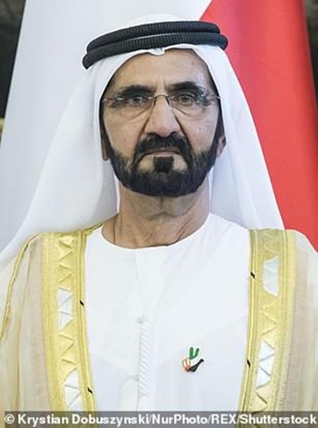 Không đủ chỗ cho con tránh nóng, tỷ phú Dubai chi tiền làm điều gây choáng - 1
