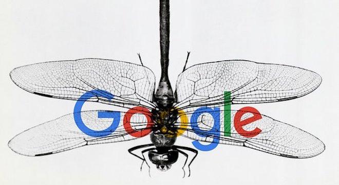 Không chịu nổi áp lực, Google chấm dứt dự án tìm kiếm tại Trung Quốc? - 1