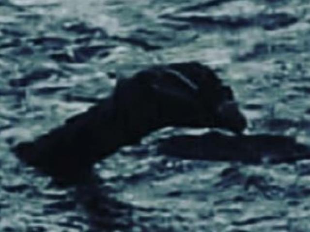 Nhà sử học khẳng định đã giải mã được bí ẩn quái vật hồ Loch Ness