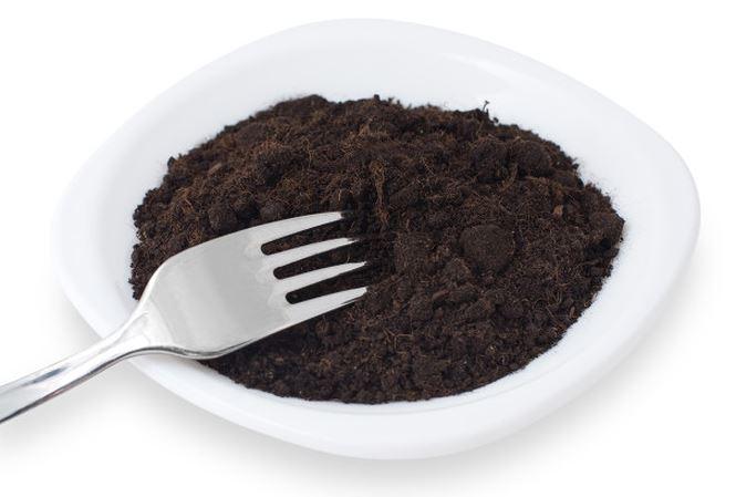 Ăn đất có thể ngừa béo phì - 1