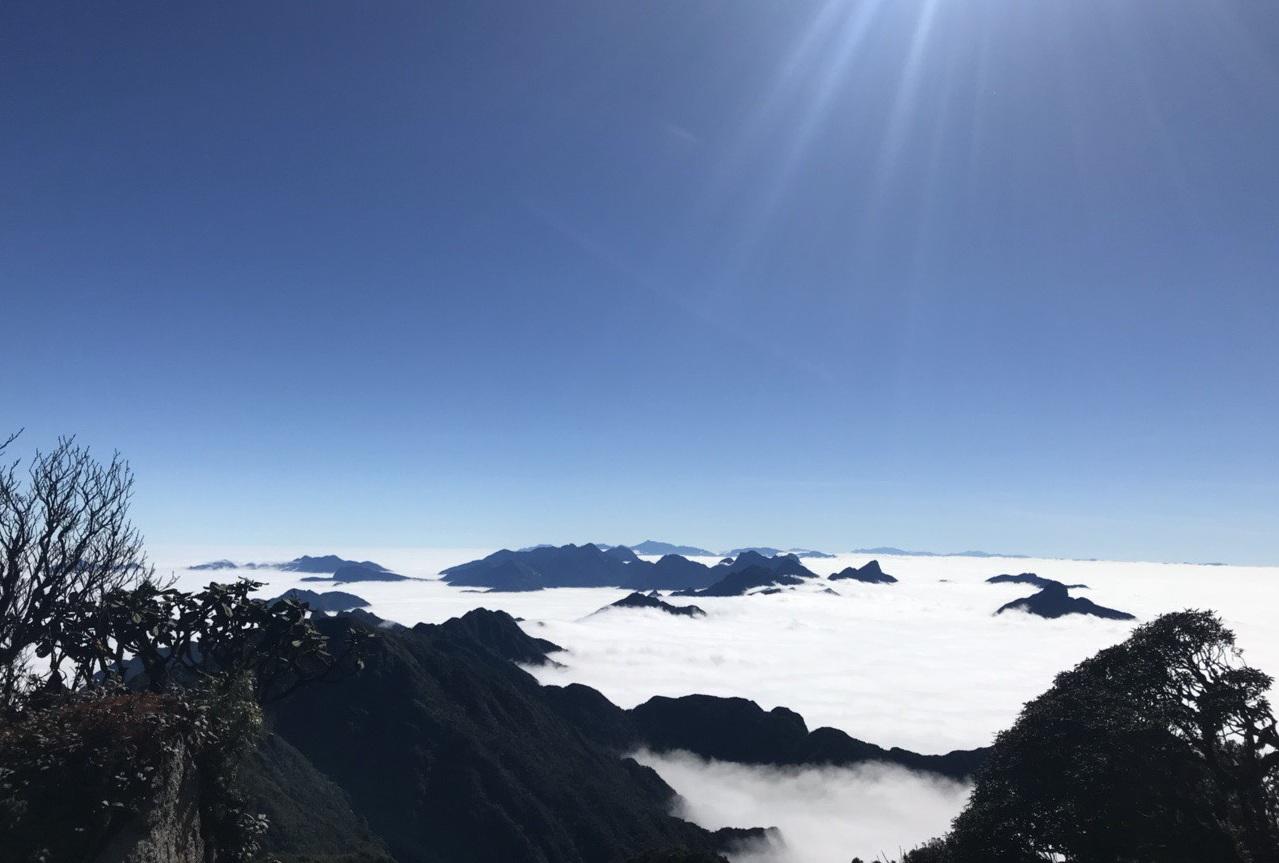 Mây trắng đổ về như suối thác, đỉnh Fansipan hóa chốn bồng lai tiên cảnh - 1