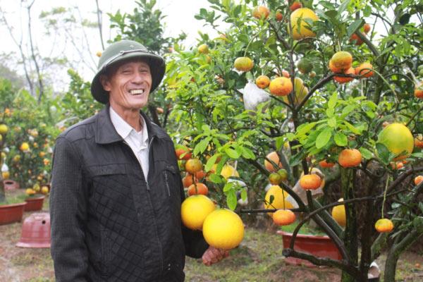"""Vườn cây thập quả chục năm vẫn """"hot"""", khách Campuchia cũng mê tít - 1"""