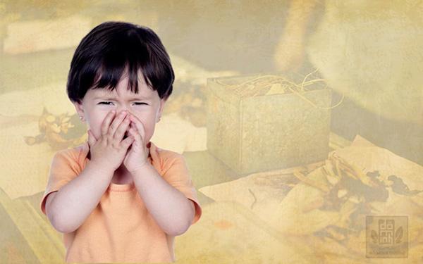 Bệnh viêm mũi dị ứng ở trẻ em và cách điều trị không kháng sinh - 1