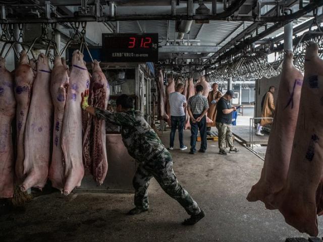 """""""Đột nhập"""" kho dự trữ thịt lợn khổng lồ bí mật của Trung Quốc"""