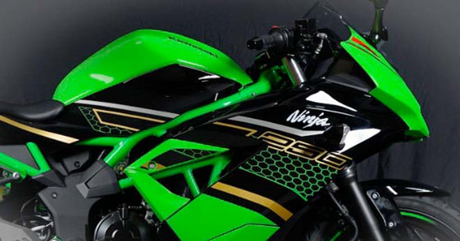 Kawasaki trình làng Ninja 250 SL KRT: Sẵn sàng hạ Honda CBR250 - 1
