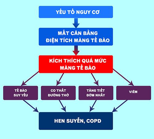 Thành công ứng dụng sinh học phân tử hỗ trợ điều trị hen suyễn, COPD - 1