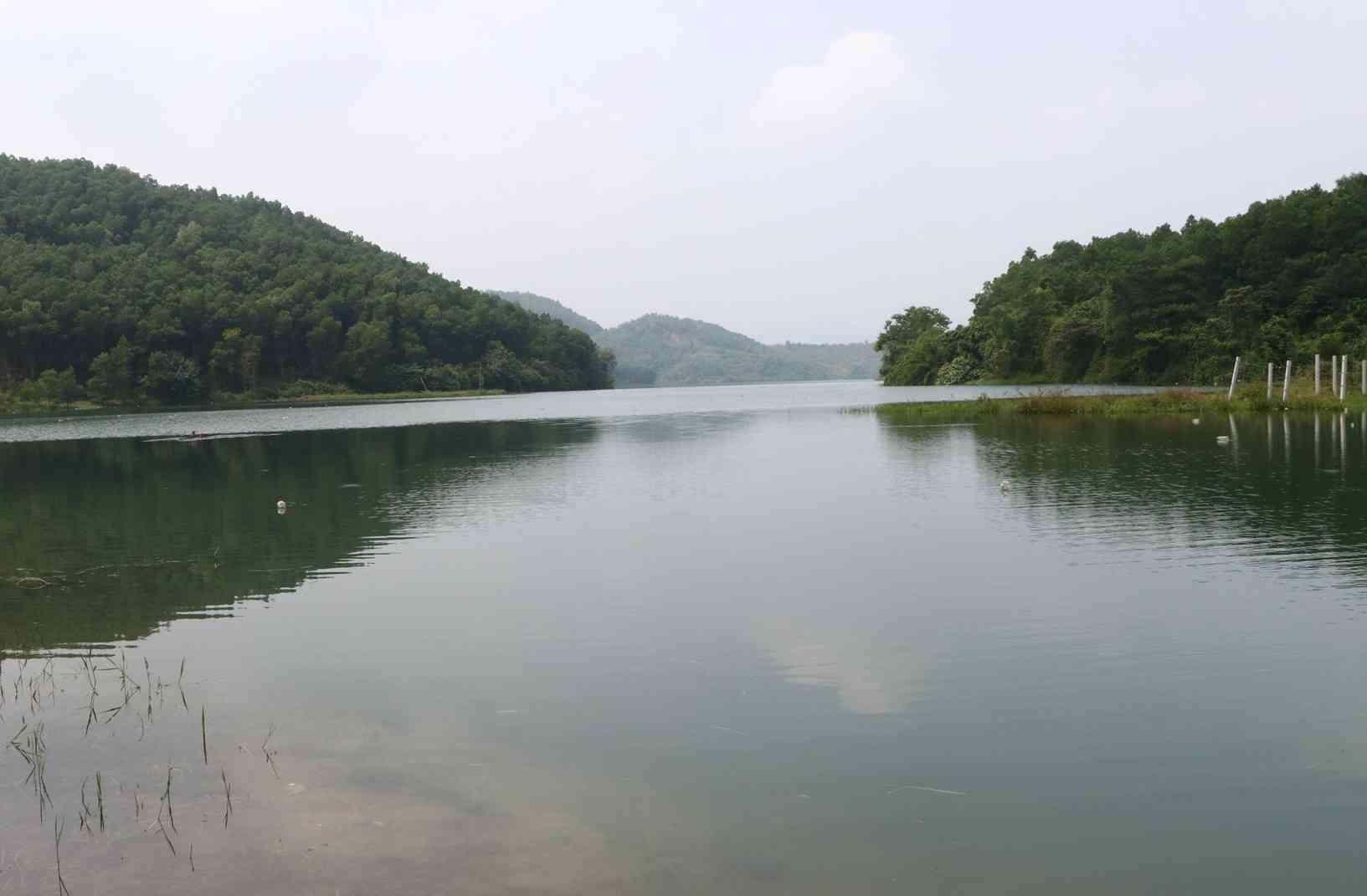 Sau vụ ô nhiễm nguồn nước, Hòa Bình đòi Công ty nước sạch Sông Đà trả hồ Đầm Bài - 1