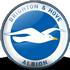 Trực tiếp bóng đá Brighton - Everton: Phản lưới bù giờ (Hết giờ) - 1