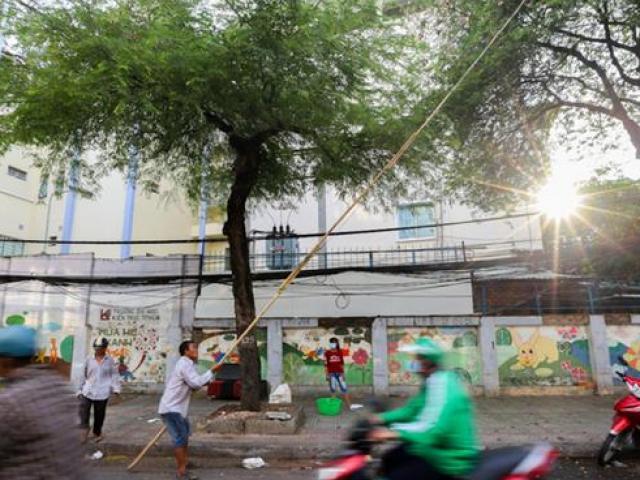 """Nghề lạ ở Sài Gòn: Cầm gậy dài 15m ra đường mà """"hái ra tiền"""""""