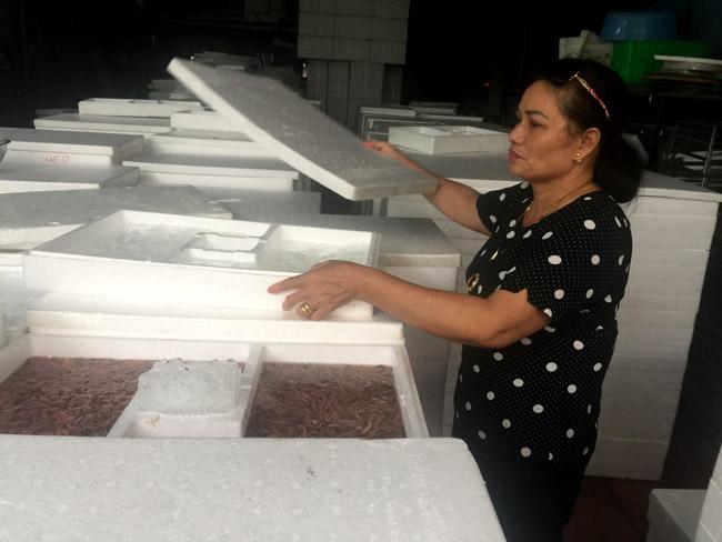 """Hơn 20 năm làm nghề buôn """"lộc trời"""", chị Bùi Thị Oanh (Tứ Kỳ - Hải Dương) được ví như bà chủ thua mua rươi lớn nhất miền Bắc. """"Tuỳ theo từng thời điểm, nhưng thời điểm ít nhất trong kho hàng chứa khoảng 10 tấn"""" – chị Oanh cho biết."""