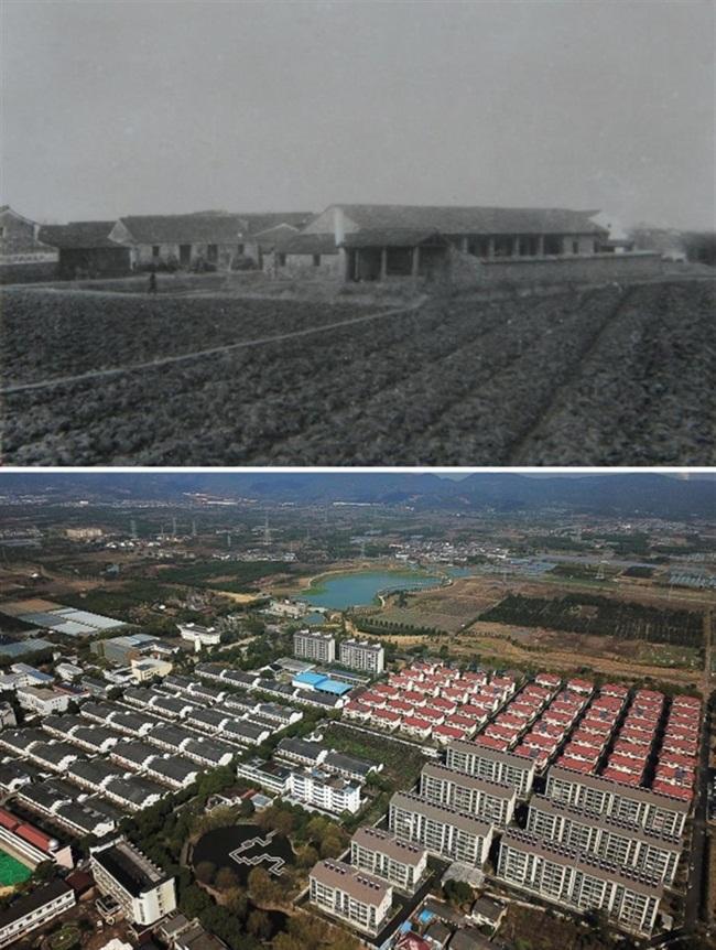 Tengtou là một ngôi làng ở Fenghua, Ninh Ba, Chiết Giang, Trung Quốc.