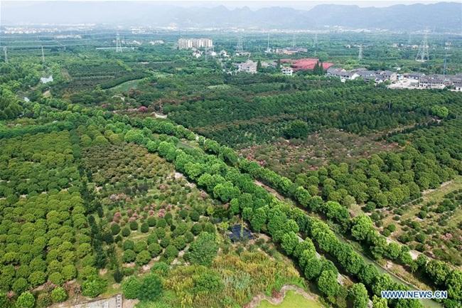 Trong tương lai, Tengtou sẽ tìm kiếm cách thức phát triển xanh mới như kinh tế tuần hoàn và năng lượng mặt trời.