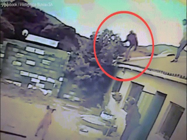 """Video: Tên trộm bị 2 con chó """"dạy cho bài học nhớ đời"""""""
